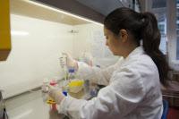 Préparation de suspension bactérienne (Neisseria meningitidis) pour test en cytométrie.