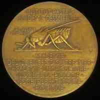 Médaille représentant une mouche Tsé Tsé
