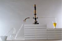 """Dispositif conçu par Louis Pasteur pour observer les """"infusoires"""""""