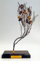 Branche de bruyère et cocons de vers à soie