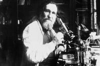 Elie Metchnikoff vers 1900-1910