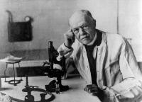 Charles Nicolle dans son laboratoire à l'Institut Pasteur de Tunis, vers 1935.