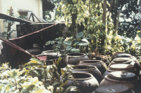 Jarres de stockage de l'eau