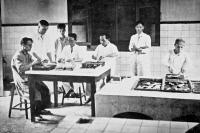 Dissection des glandes à venin de serpents à l'Institut Pasteur de Saïgon vers 1900