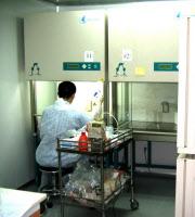 Laboratoire de sécurité de type P2 à l'Institut Pasteur de Shangaï en 2005.