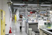 Laboratoire de recherche - Institut Pasteur de Corée