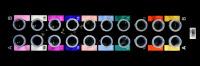 Séquenceur Plate-Forme Génomique (PF1)