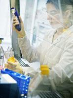 Reportage dans l'Unité de Génétique Moléculaire des Virus ARN