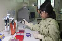 Cambodge - Institut Pasteur du Cambodge