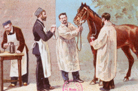 """""""Le Dr Roux, élève de Pasteur, découvre le remède contre la diphtérie"""""""