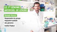 """Ils font avancer la recherche - """"Le 1er génome artificiel de levure"""""""