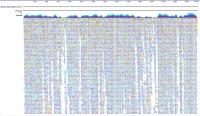 Séquence complète du coronavirus 2019-nCoV