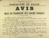 """Avis de """"Mise en fourièrre des chiens errants"""" en 1888"""