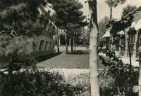 Institut Pasteur de l'Iran vers 1953.