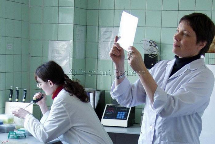 Laboratoire de microbiologie moléculaire à l'Institut Pasteur de Saint Petersbourg