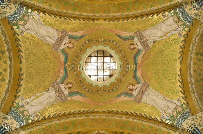 Mosaîque dans la crypte néo-byzantine où repose Louis Pasteur, Musée Pasteur, Paris