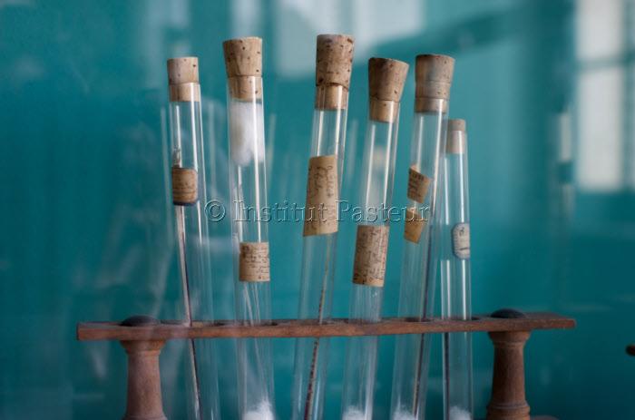 Tubes à essai - Salle des souvenirs scientifiques - Musée Pasteur