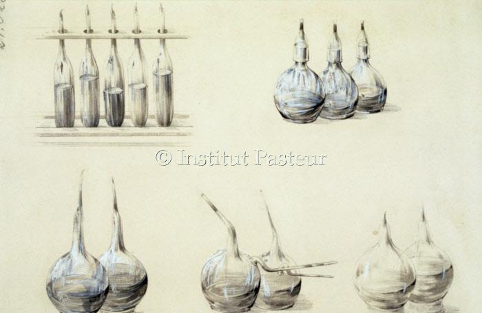 Dessins objets illustrant les travaux de Pasteur sur le vin