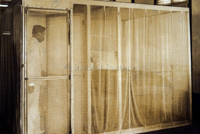 Cabine moustiquaire, mission Paul-Louis Simond en Martinique 1908-1909