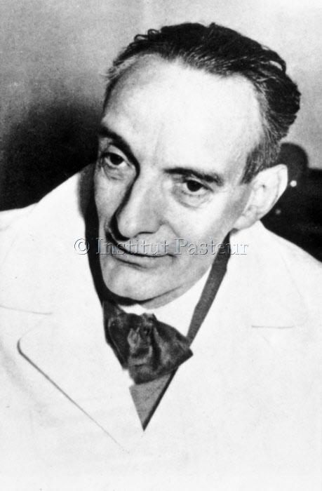 Daniel Bovet (1907-1992) vers 1955-1957