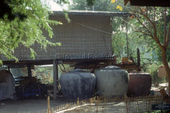 Gîtes à larves de moustiques : récipients de stockage d'eau