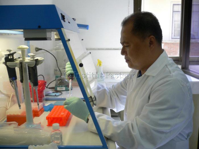 Analyse d'échantillons au NCLE - Laos en 2006