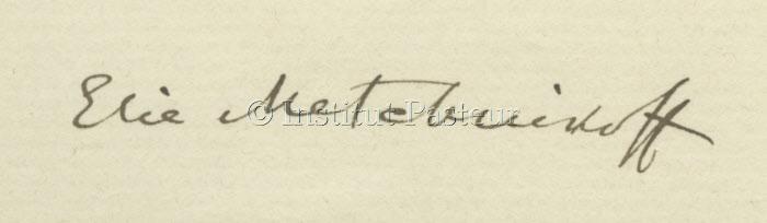 Signature d'Elie Metchnikoff (1845-1916)
