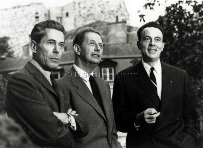 Jacques Monod (1910-1976), André Lwoff (1902-1994) et François Jacob (1920-2013) devant l'Institut Pasteur le jour de l'annonce du prix Nobel de physiologie ou médecine le 14 octobre 1965