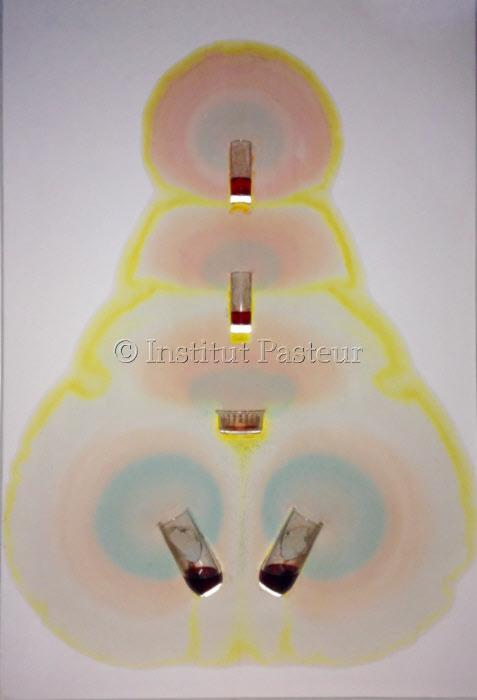 <i>Peinture cellulaire rechargeable</i>