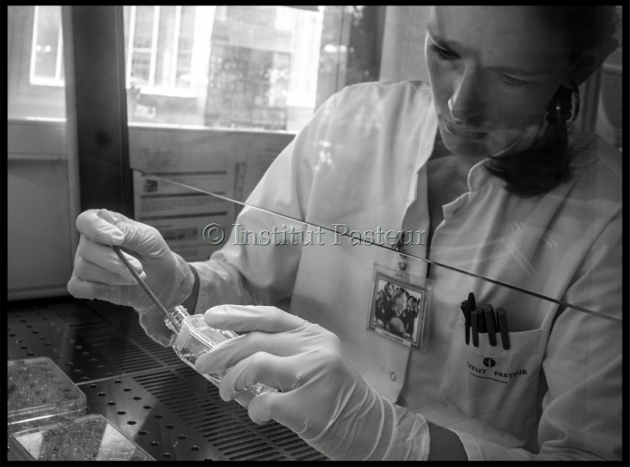 Institut Pasteur de Nouvelle-Calédonie - U.R.E. Leptospirose