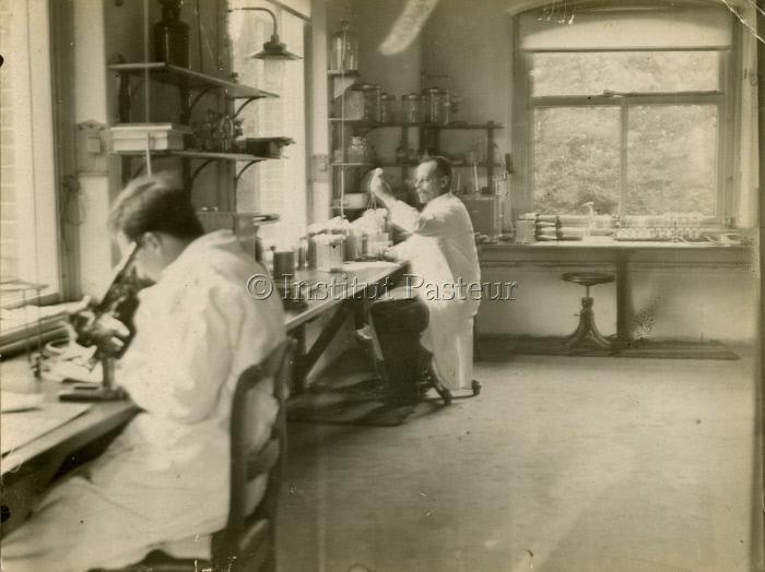 Félix d'Hérelle dans un laboratoire assis à sa paillasse.
