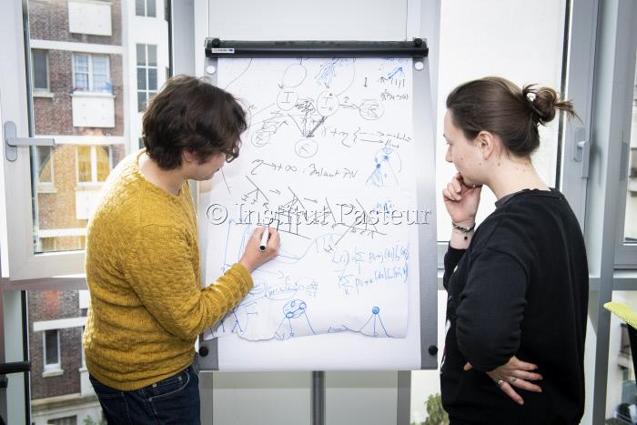 Reportage dans l'unité de Bioinformatique Evolutive