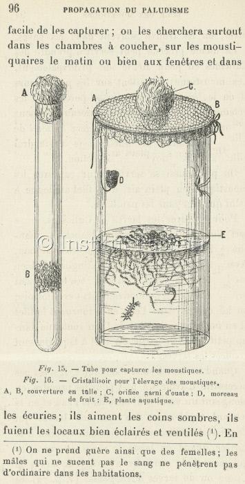 """Page extraite de """"Prophylaxie du paludisme"""" par le Dr. A. Laveran."""