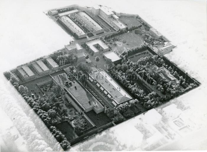 Vue aérienne de l'Institut Pasteur d'Iran vers 1954