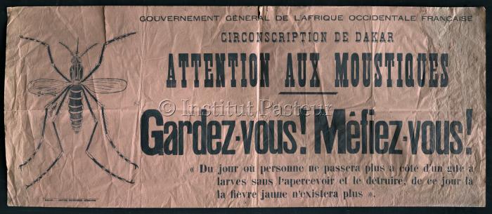 """Affiche """"Attention aux moustiques"""""""